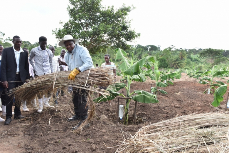 Image result for President Yoweri Museveni took a group of journalists on a tour of Kawumu Presidential Farm in Makulubita Sub-county, Luweero District.